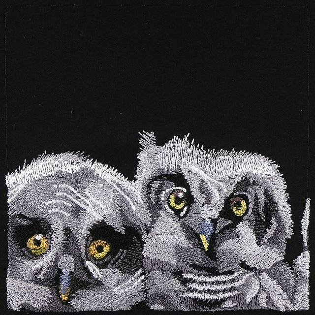 BFC0947 Window-Three Baby Owls