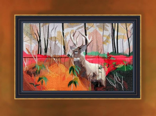BFC0952 Window-A Majestic Buck in fading Sunlight