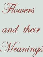 BFC1053 Flowers and Their Meanings