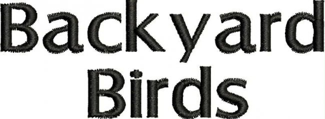 BFC1868 Backyard Bird Portraits