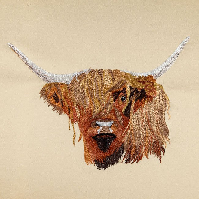 BFC30604 Gry - The Scottish Cow